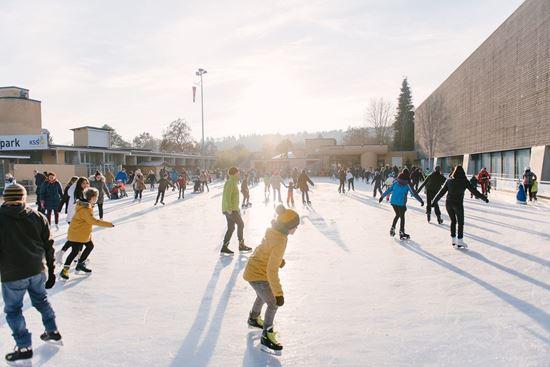 Picture of Gutschein Saisonkarte Eispark Kinder